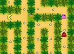 Pacman-game-in-the-jungle